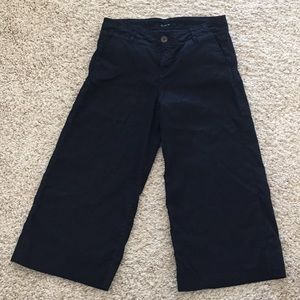 Level 99 Anthropologie wide leg cropped pants